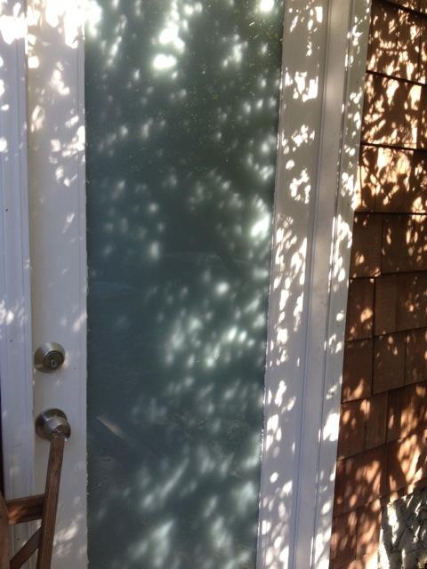 Morning Door - Michaela O'Donnell Long