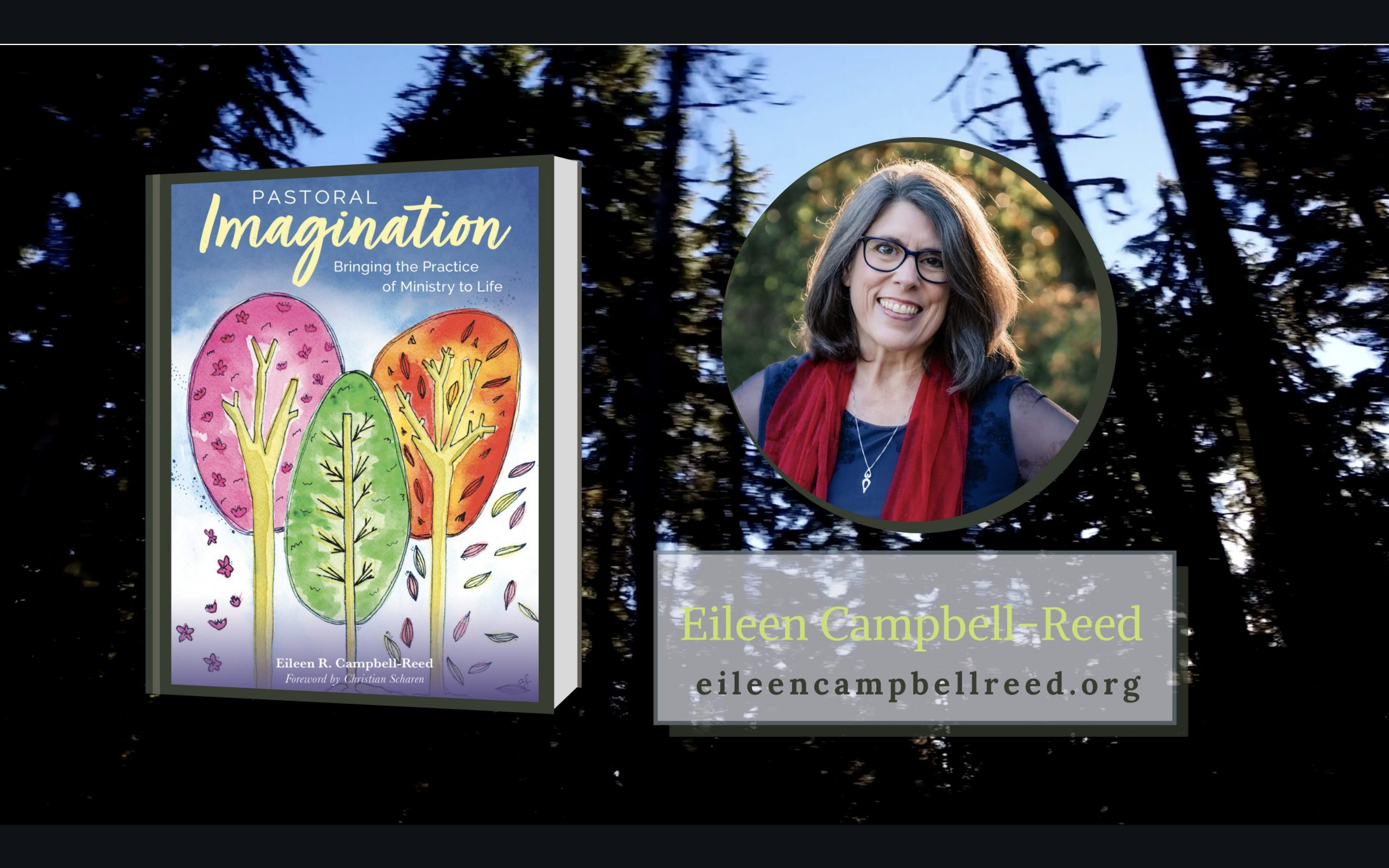 Pastoral Imagination Book Cover Reveal